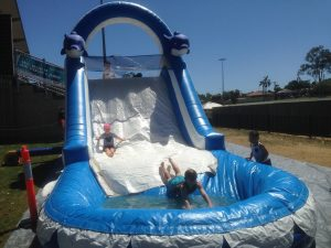 DOLPHIN WATER SLIDES 10X3X3MH AGES FROM 3 TO ADULTS